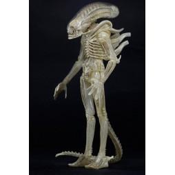 Aliens - Xenomorph ALIENS S.7 CONCEPT ALIEN AF - (Translucent Prototype Suit) - Action Figure - Neca
