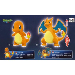 Pokemon Plush - Charizard & Charmander - Peluche SET - Lizardon Night - Peluche 28 cm