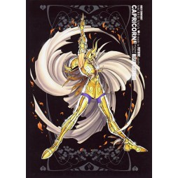 Saint Seiya - Sacred Saga - Capricorne - Poster - Wall Scroll in Stoffa