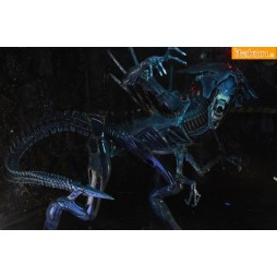Aliens - Xenomorph Queen - Ultra Deluxe Boxed
